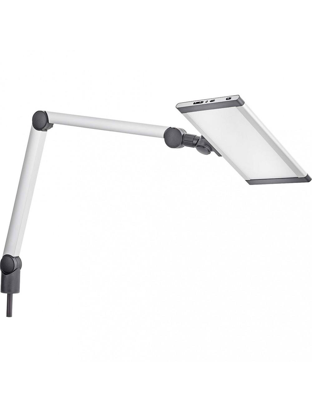 Das Produkt Reitel LED-Leuchte Mini mit Tischbefestigung 19101000 aus dem Global-dent online shop.
